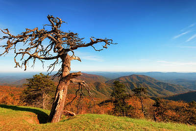 Poster featuring the photograph Autumn Scenic Drive Along The Blue Ridge Parkway In North Caroli by Dee Browning