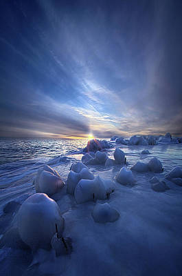 Poster featuring the photograph Letting Go by Phil Koch