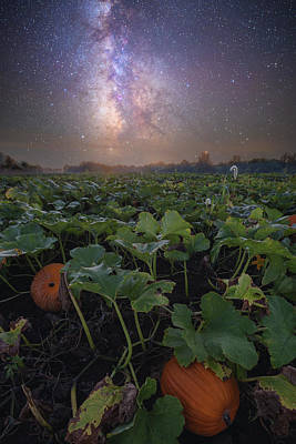 Poster featuring the photograph Pumpkin Patch  by Aaron J Groen
