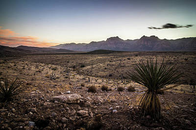 Poster featuring the photograph Red Rock Canyon Las Vegas Nevada At Sunset by Alex Grichenko