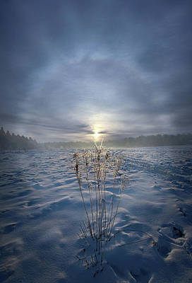 Poster featuring the photograph All Is Blue For A Time by Phil Koch
