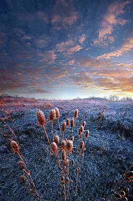 Poster featuring the photograph All That You Need Is In Your Soul by Phil Koch