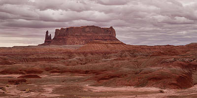 Poster featuring the photograph Arizona Red Clay Painted Desert Panoramic View by James BO Insogna
