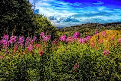 Art Photo Of Vermont Rolling Hills With Pink Flowers In The Fore Poster