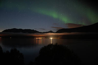 Aurora Northern Polar Light In Night Sky Over Northern Norway Poster