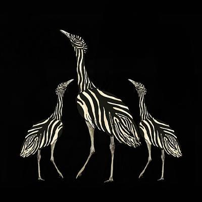 Australian Bustard Zebra 2 Poster