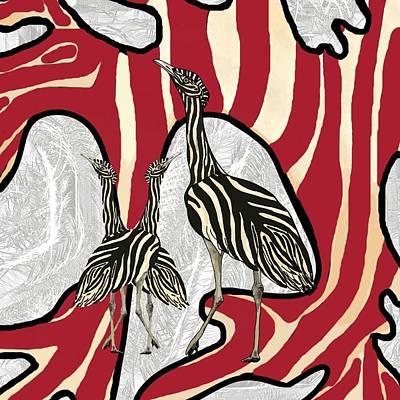 Australian Bustard Zebra 5 Poster