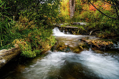Poster featuring the photograph Autumn Along The Provo Deer Creek by TL Mair