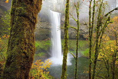 Autumn At Silver Falls State Park Poster