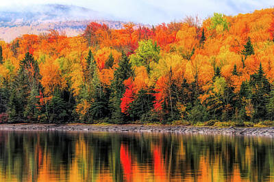 Poster featuring the photograph Autumn Colors Reflection by Dan Sproul