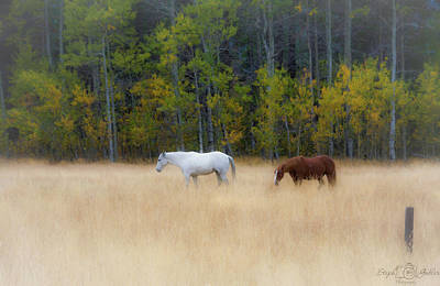 Autumn Horse Meadow Poster