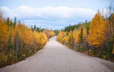 Autumn In Ontario Poster