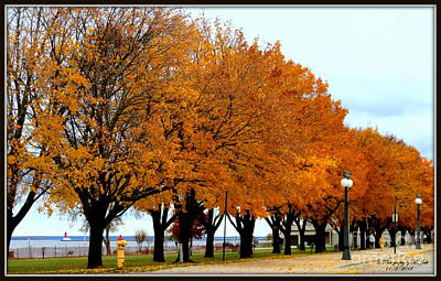 Autumn Leaves In Menominee Michigan Poster