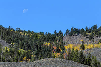 Poster featuring the photograph Autumn Moon by James BO Insogna