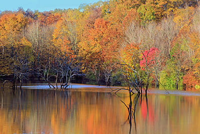 Poster featuring the photograph Autumn Reflections by Angela Murdock