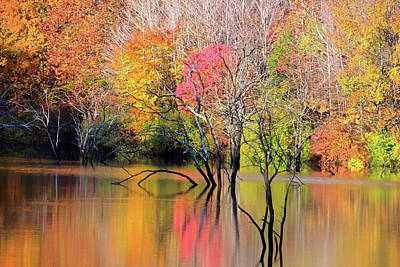 Poster featuring the photograph Autumn Reflections At Alum Creek by Angela Murdock