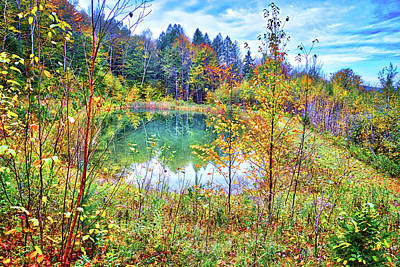 Poster featuring the photograph Autumn Reflections At The Pond by Lynn Bauer