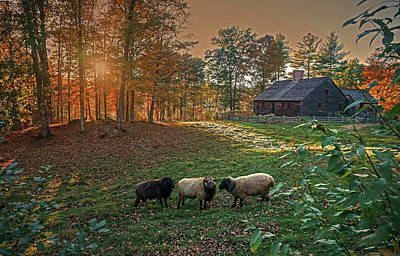 Autumn Sunset At The Old Farm Poster