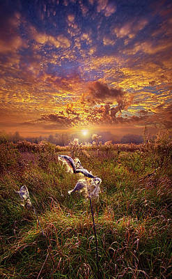 Poster featuring the photograph Autumn Wings by Phil Koch