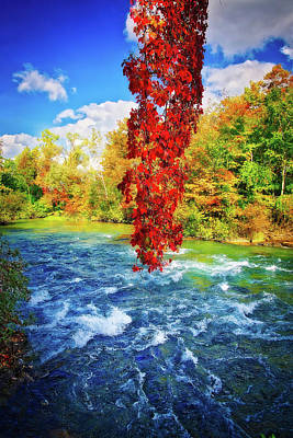 Poster featuring the photograph Autumn's Flame - Niagara Falls, New York by Lynn Bauer