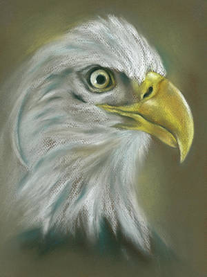 Poster featuring the pastel Bald Eagle With A Keen Eye by MM Anderson