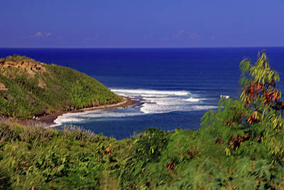 Poster featuring the photograph Bay In St Kitts by Tony Murtagh