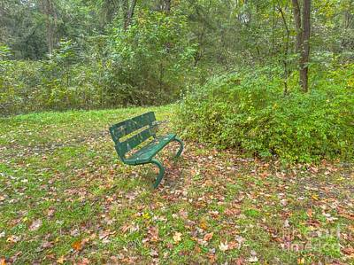 Bench Overlooking Pine Quarry Poster