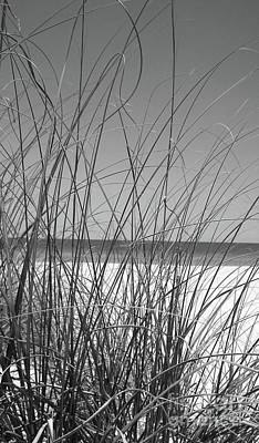 Black And White Beach View Poster