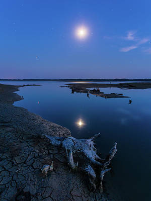Blue Moonlight Poster