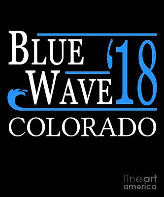 Blue Wave Colorado Vote Democrat 2018 Poster