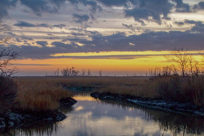 Poster featuring the photograph Bombay Hook Dawn's Early Light by Kristia Adams