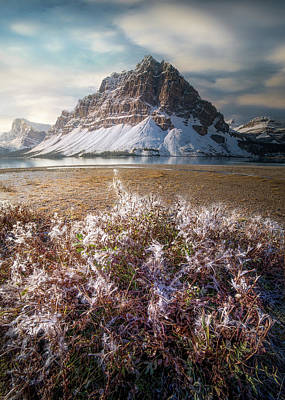 Poster featuring the photograph Bow Lake / Alberta, Canada  by Nicholas Parker