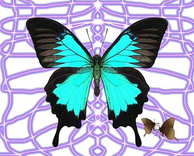 Butterfly Patterns 18 Poster