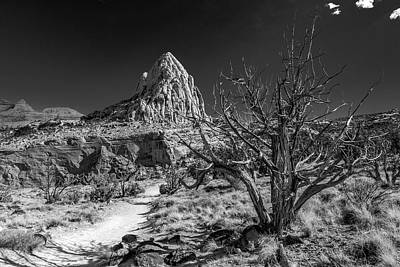 Capitol Reef Np - But, It's A Dry Heat... Poster