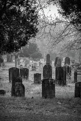 Poster featuring the photograph Cemetery In The Pines Bw by Kristia Adams