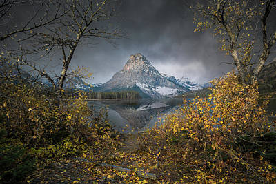 Poster featuring the photograph Clinging On / Late Fall / Two Medicine Lake, Glacier National Park  by Nicholas Parker