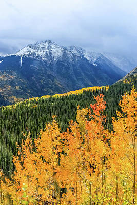 Colorado Aspens And Mountains 4 Poster