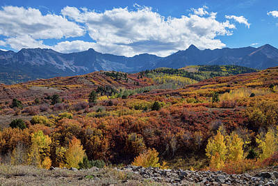 Poster featuring the photograph Colorado Color Lalapalooza by James BO Insogna