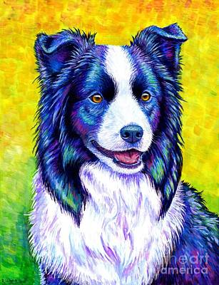 Colorful Border Collie Dog Poster