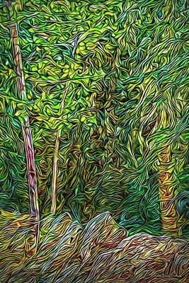 Poster featuring the digital art Deep Forest Portal by Joel Bruce Wallach