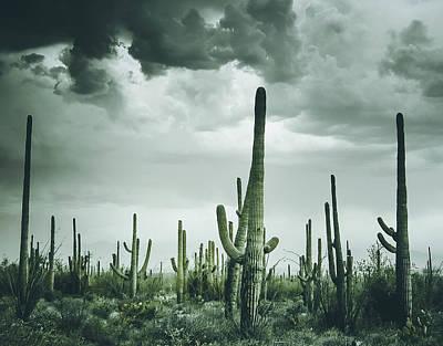 Desert Storm In Arizona Poster