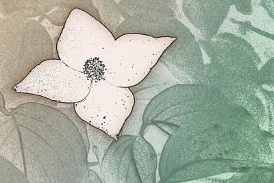 Dogwood Flower Stencil On Sandstone Poster