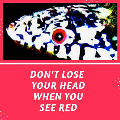 Poster featuring the photograph Don't Lose Your Head When You See Red by Judy Kennedy