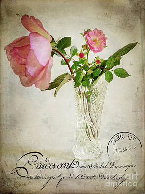Poster featuring the digital art English Rose by Edmund Nagele