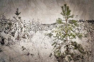 Fairytale Of Winter Forest. Shchymel, 2018. Poster