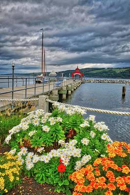Poster featuring the photograph Fall Flowers At Seneca Lake Marina by Lynn Bauer
