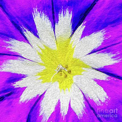 Flower Burst Poster