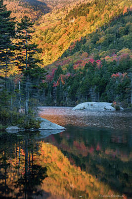 Foliage Burst At Kinsman Notch Poster