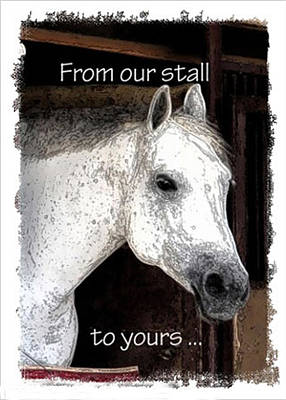 Poster featuring the photograph From Our Stall To Yours by Jerry Sodorff