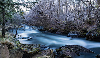 Frozen River Surrounded With Trees Poster